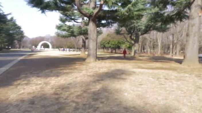 「ミスMガールズ Vol.6 児玉のんの」黄服景色